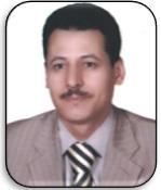 Mohamed Tharwat Abdel Aal Attia